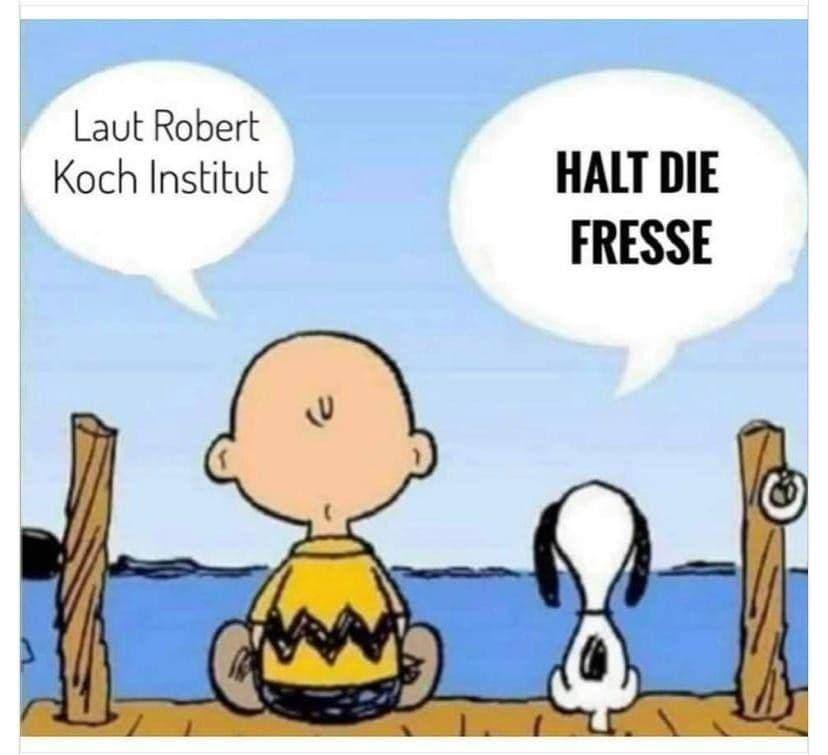 HALT DIE FRESSE - NACHRICHTEN!