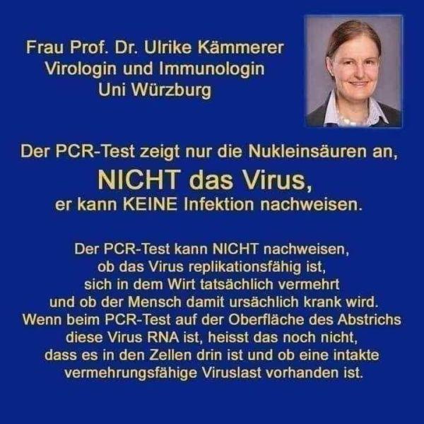 Der PCR-Test zeigt NICHT das Virus oder eine Infektion an!