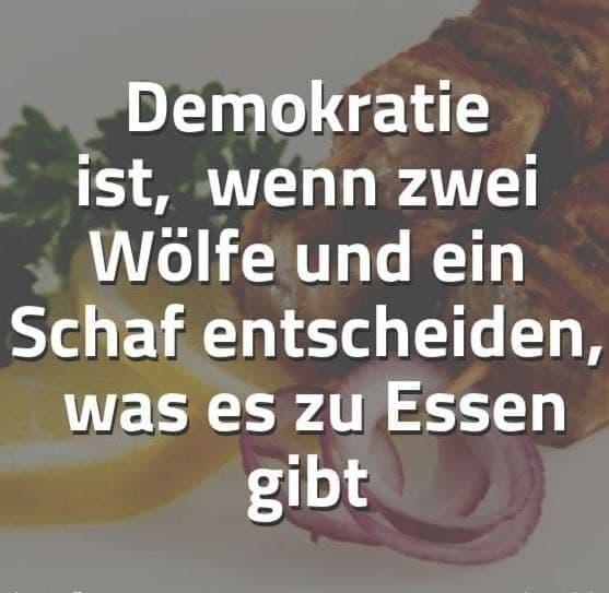 Demokratie ist...